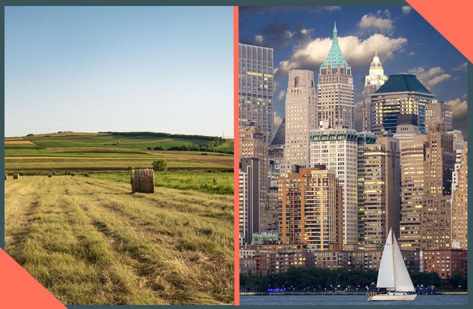 Rural vs Urban Dental Markets